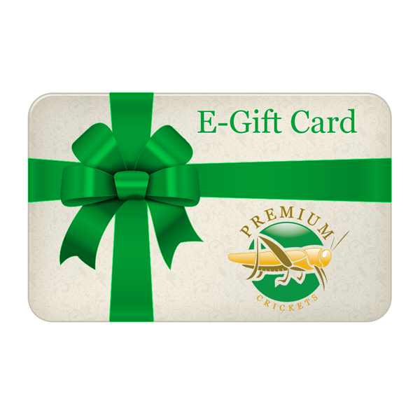 Gift Certificate gift04