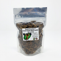 NutriCricket Freeze Dried Black Soldier Fly Larvae FDBSL