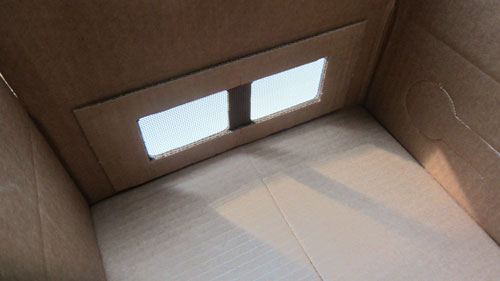 Inside Box with Glued Screen