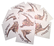 Got Gecko? Decal aagotgecko